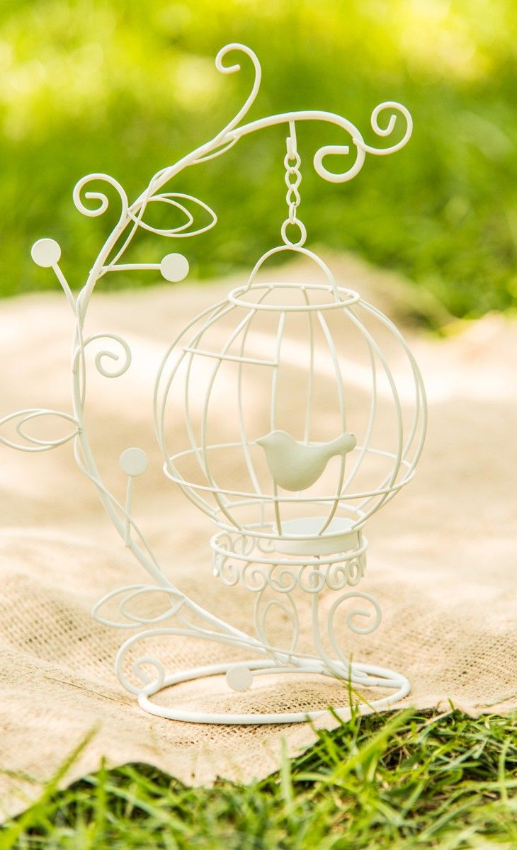 hanging birdcage with little bird