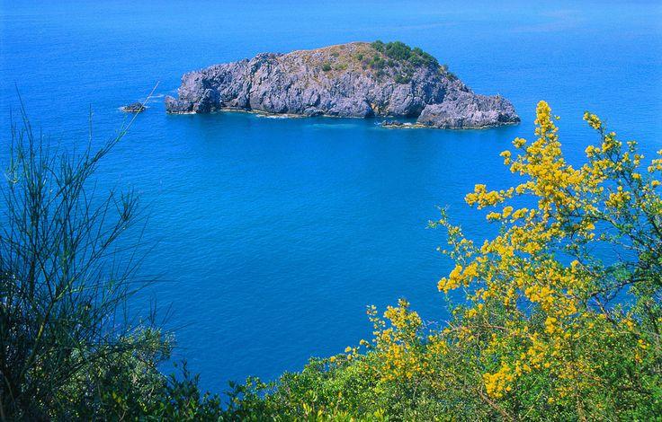 La Isla de Cirella es la menor de las dos islas de la región de Calabria. Se encuentra ubicada en la costa noroeste del mar Tirreno de Calabria, frente a la ciudad de Cirella, en la frazione de Diamante, Provincia de Cosenza.