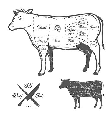 Search in addition Leg Meat furthermore Beef cuts also Pork chops in addition Deer Cuts Diagram. on steak cuts guide