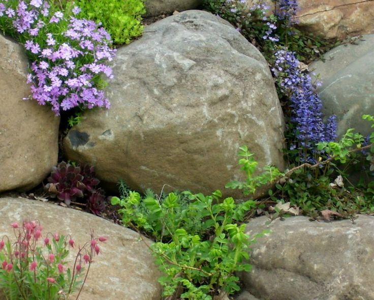 19 Best Rock Wall Garden Images On Pinterest | Backyard Ideas