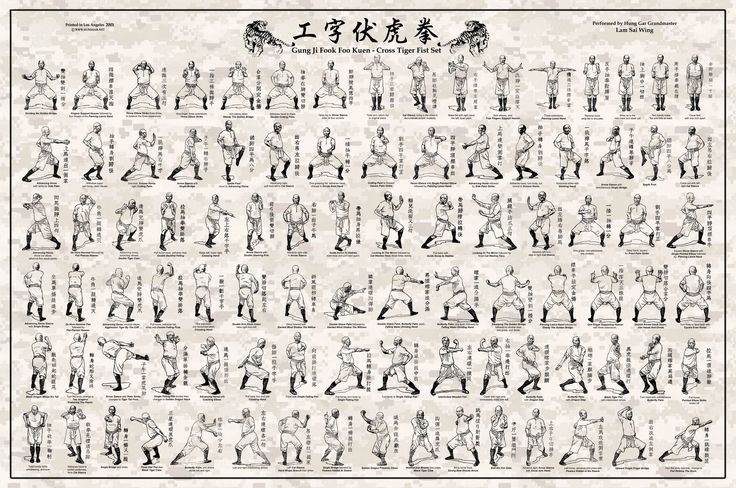 hung gar kung fu - the Fu Hok pattern