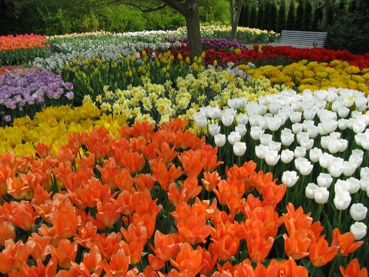 15 best Longwood Gardens Kennett Square PA images on Pinterest
