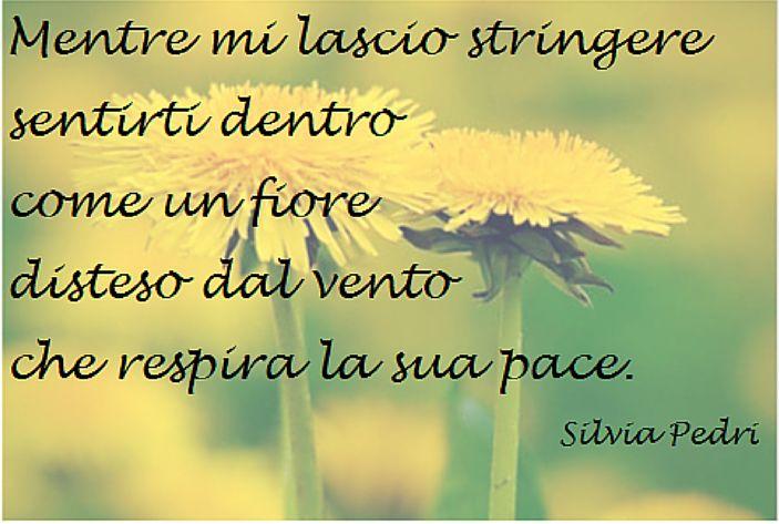 """Silvia F. M. Pedri, """"La Ricerca dell'Anima Gemella - percorso in quasi 200 poesie"""", tutti i colori dell'amore, della passione e della Felicità. LEGGI ORA! http://www.ultimabooks.it/la-ricerca-dell-anima-gemella-percorso-in-quasi-200-poesie  #animagemella #twinsoul #felicità #amore"""