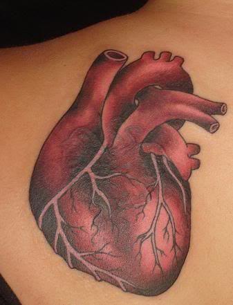 Google Image Result for http://www.db45.com/tattoos/tattoopics/heart/heart_tattoo_28.jpg