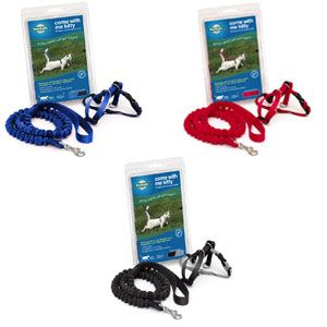 PetSafe Come With Me Kitty Harness and Bungee Cat Leash   Pet Food Direct