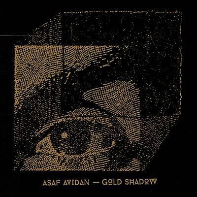 Fair Haired Traveller - Asaf Avidan