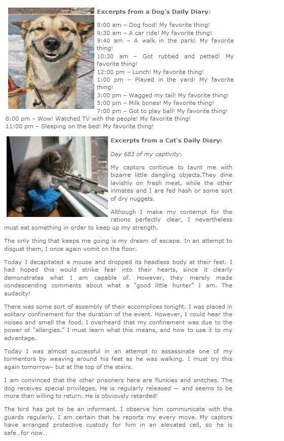 Diary of a Dog, Diary of a Cat. too long didnt read? you