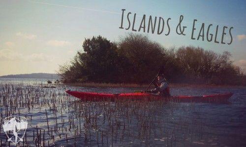 Islands and eagles kayak tour