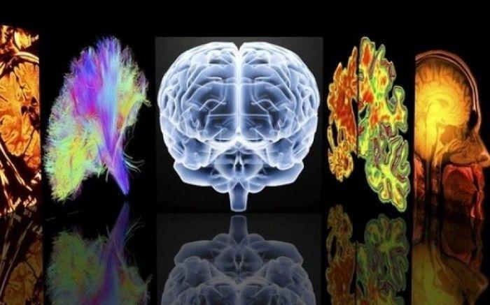 Ουσίες που προστατεύουν από την γήρανσητου εγκεφάλου άνθρωποι μεγαλώνουν μπορεί να βιώσουν ένα φάσμα ζητημάτων μειωμένη κριτική σκέψη, άνοια και νόσο Αλτσχ