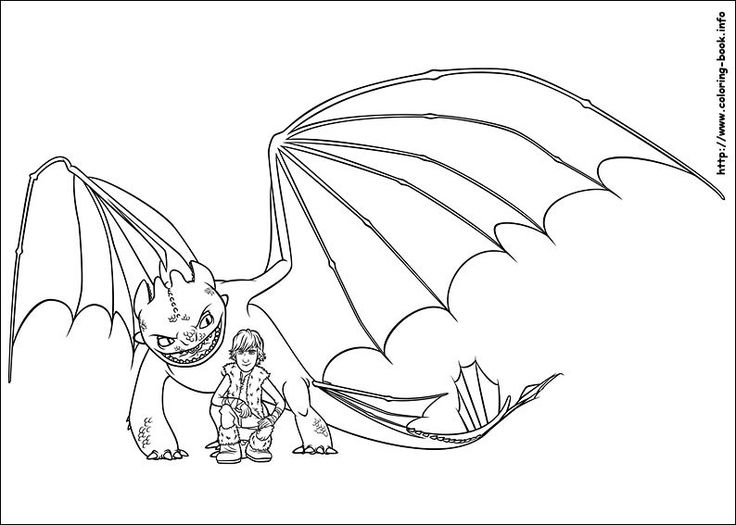 how to train your dragon coloring picture  dragon