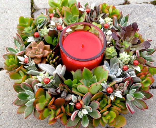 Try something new this holiday season with a colorful succulent wreath arrangement.