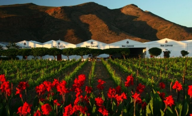 Van Loveren, situated in the Robertson Valley in the Western Cape, is South Africa's largest family-owned winery. It belongs to the Retief family, a third generation of wine lovers who produce six ranges of wine including Van Loveren, and the ultra-premium Christina van Loveren collection of wine.