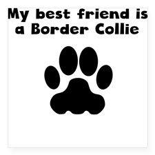 border collie humor - Google Search