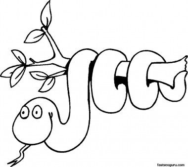 free print out coloring pages of jungle snake on branch printable coloring pages for kids