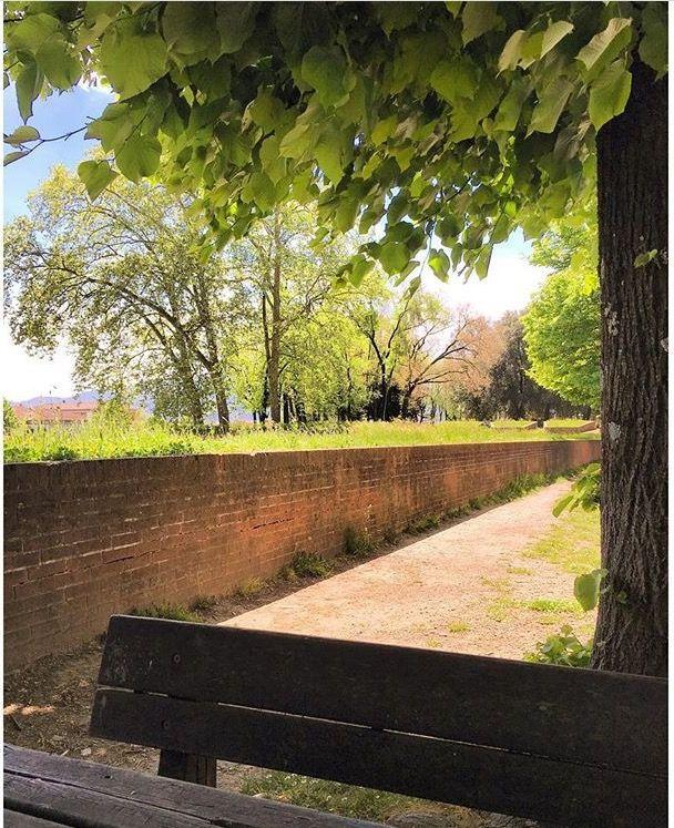 •Mura di Lucca, Italy•