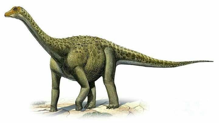 Pin On Paleontology