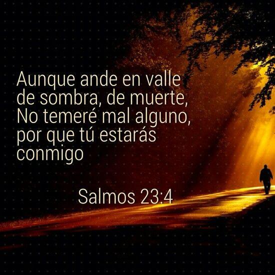 AUNQUE ANDE EN VALLE DE SOMBRA,NO TEMERE MAL ALGUNO PORQUE TU ESTARAS CONMIGO SALMO 23:4