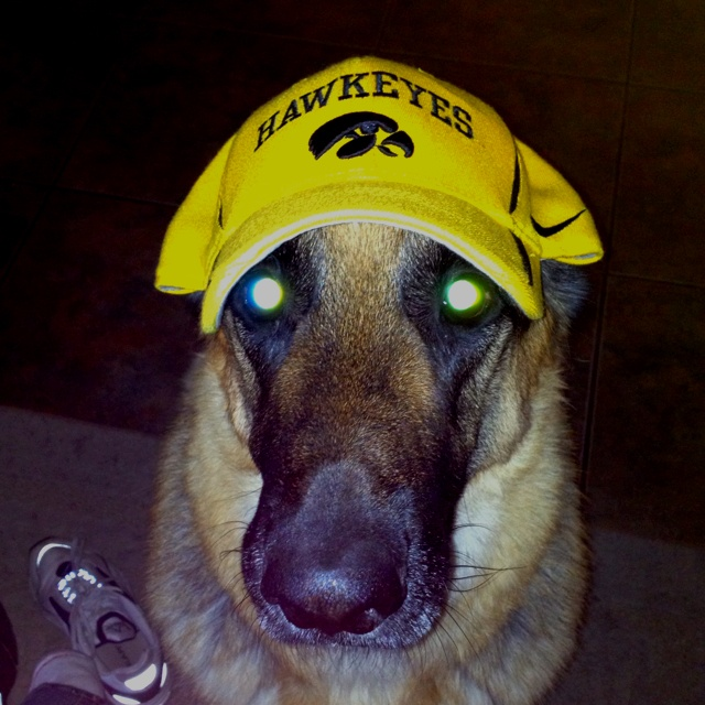 96 Best Images About Iowa Hawkeyes On Pinterest Football