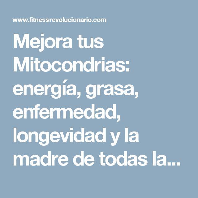Mejora tus Mitocondrias: energía, grasa, enfermedad, longevidad y la madre de todas las madres – Fitness Revolucionario
