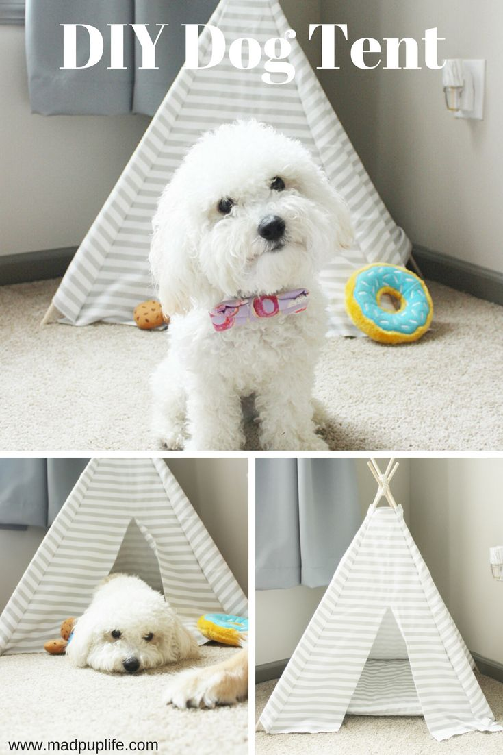 DIY Doggie Tent! So cheap and easy