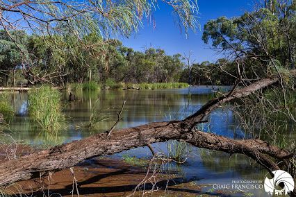 Compliment of Craig Francisco - Google+ Kings Billabong, Mallee Region, Victoria, Australia. For more of Craigs work click through to the link.
