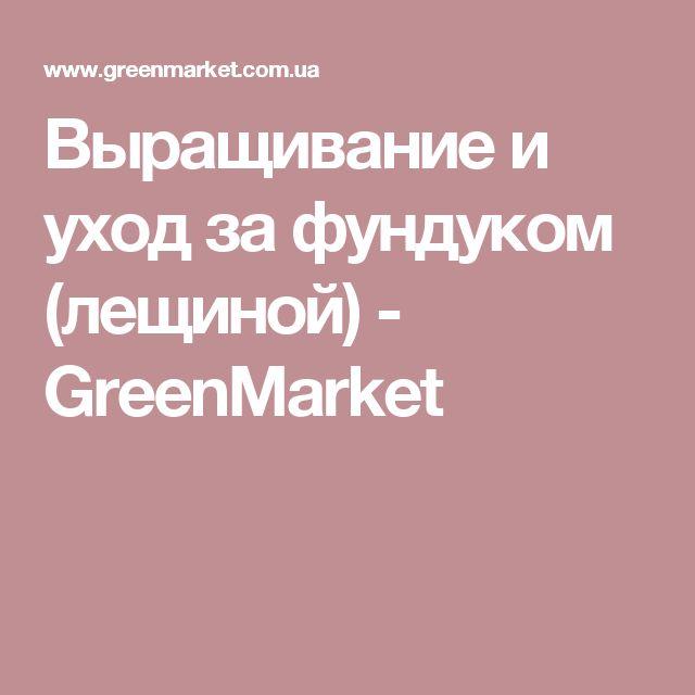 Выращивание и уход за фундуком (лещиной) - GreenMarket