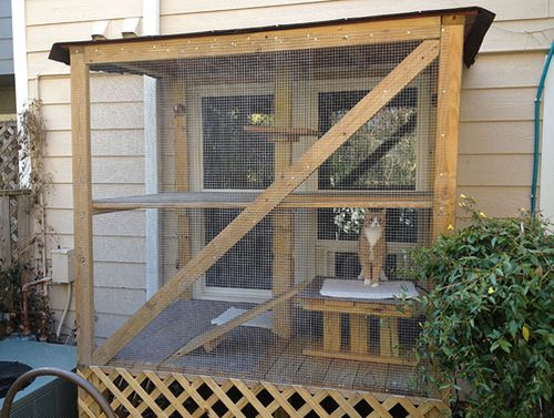 11 Cats With Better Apartments Than Yours Cats The O