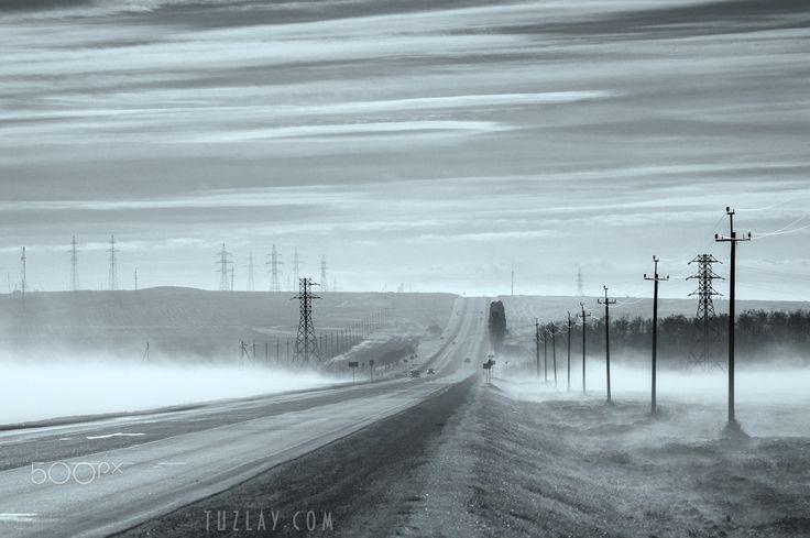 Foggy morning in November - Foggy morning in November on one of the roads of the Taman Peninsula. Krasnodar region. 2016.