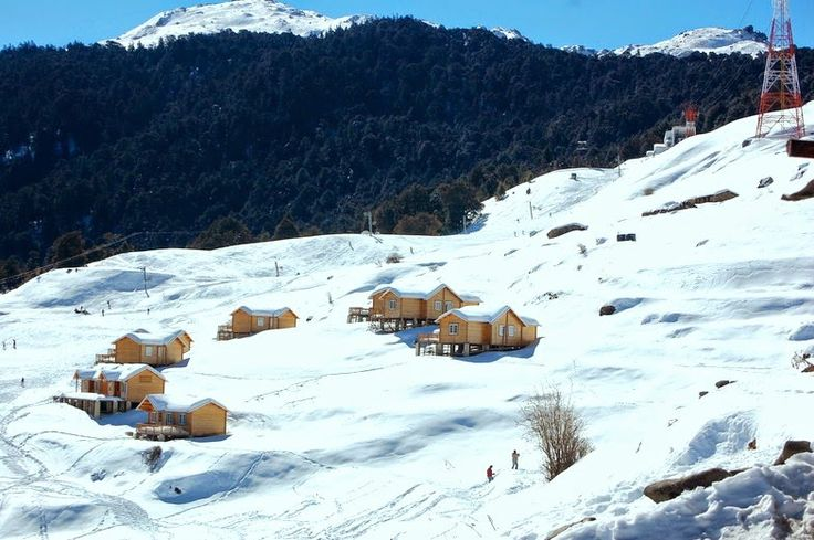 Winter Destination: Auli ❄️    India's ski resorts are largely confined to the western half of the Himalayas- in Uttarakhand - high enough to get a good cover of snow during the winter months, yet low enough to be easily accessible.  #Travel #Auli #Uttarakhand #Mussoorie #skii #wintertreks #winterdestination #winterready #winteriscoming #winter #travelIndia #TravelinginIndia #snowfall #beautiful #nature #thingstodoinauli #explore #hike #trek #mountains