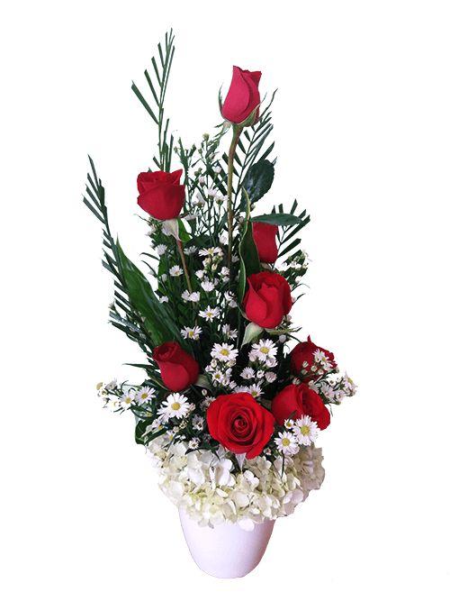 Hermoso arreglo floral que incluye: 8 Rosas Rojas Gipsofilia Base de cerámica Hortensia Follaje Tarjeta con mensaje personalizado Altura promedio del arreglo: 50cms Arreglo floral elaborado cuidadosamente por expertos floristas,eligiendo siempre las flores más frescas,hermosas y de la más alta calidad. Puede que sea entregado con el botón cerrado para garantizar el mejor tiempo de vida del arreglo. Visita nuestra sección de ADICIONALES PARA SU REGALO y complementa tu regalo con sorpr...