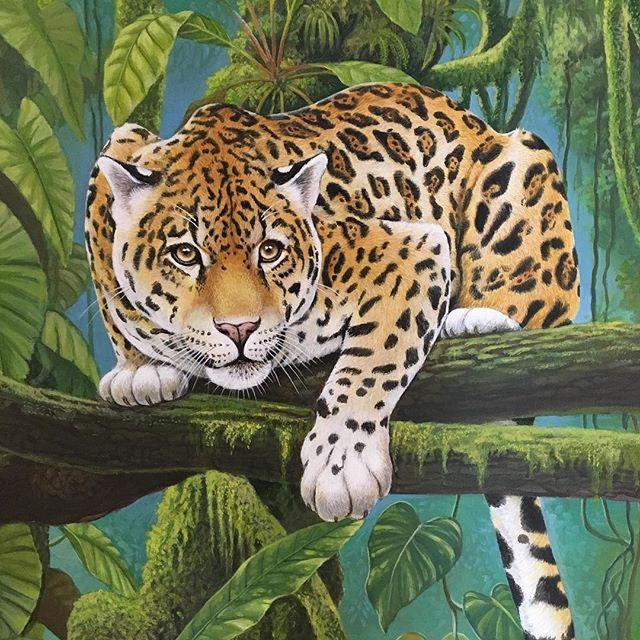 #Colombia #charta #santander #nature #me #colorful #cat #felino #art #arte #travel #adventure #naturaleza #love #instagram #exposition #exposicion Cesar Landazabal Mendoza  en Charta #photooftheday #photograpy #photo Casa de la Cultura UCATA (Charta) #worldphotoday