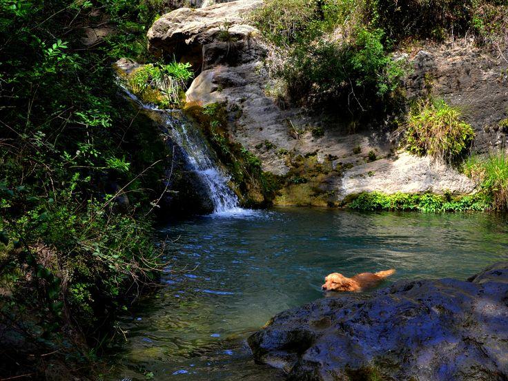 Parc del foix cerca bcn tipus activitat excursiones for Piscines naturals catalunya
