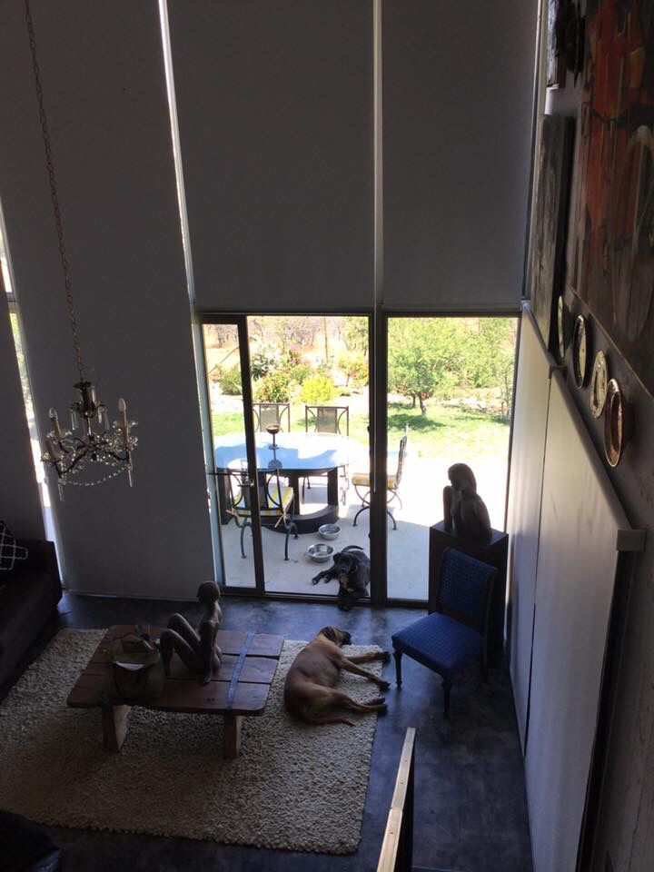 Long drapes and dogs