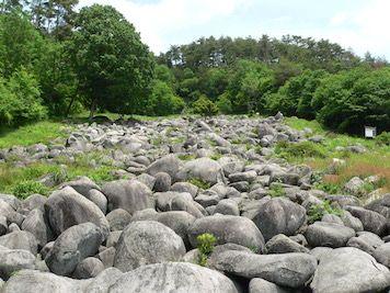 【F】久井岩海(国天然記念物)岩に耳を当てると水の流れる音がするそうです。