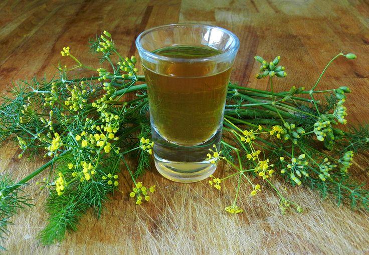 liquore di finocchietto selvatico #ricettedisardegna #sardegna #sardinia #food #recipe