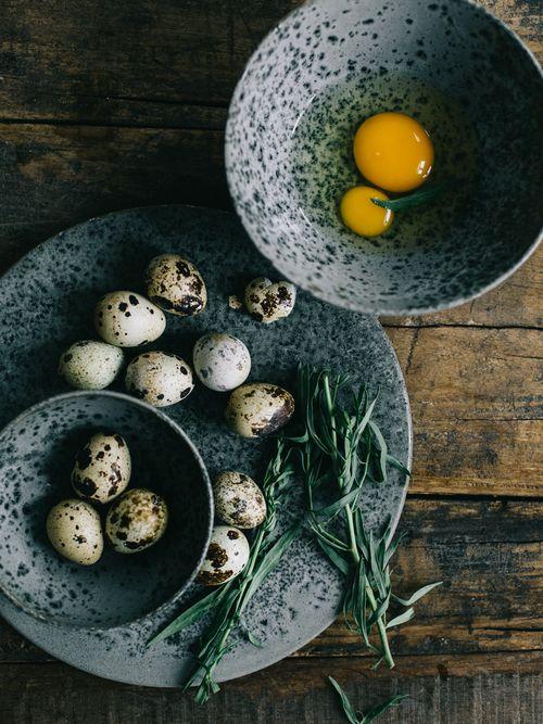 Quail eggs still life photo