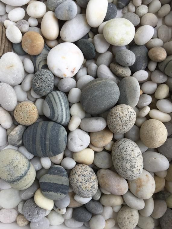 Maine Beach Stones 50 Mixed Rounded Rocks From Maine 1 2 Etsy Beach Stones Maine Beaches Beach Rocks
