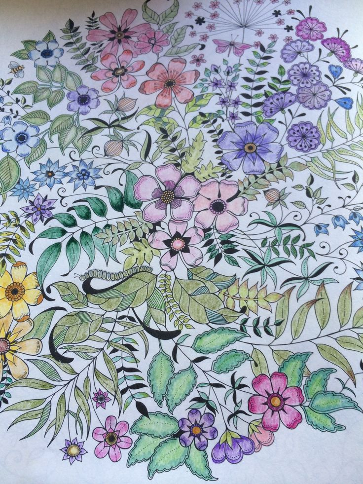 A Colored In Page From The Adult Coloring Book My Secret Garden By British Illustrator Johanna Basford
