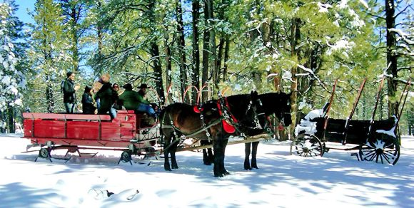Northern Arizona Horseback Riding at our Dude Ranch on scenic trail rides, wagon rides, sleigh rides and enjoy cowboy cookouts located in Flagstaff, AZ.