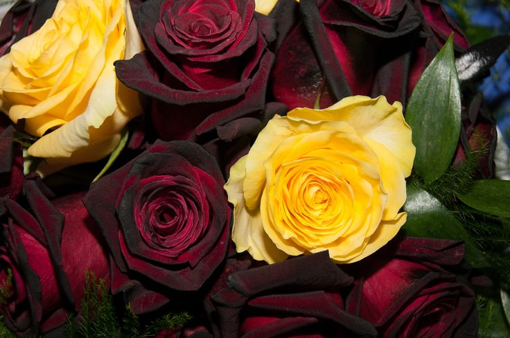 Black and yellow roses. Wedding bouquet