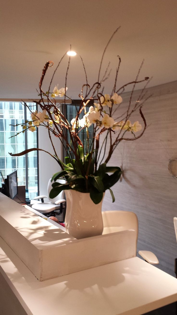 Visit theorchidcollection shop to have a look of such beautiful flowers to decorate your home & office.