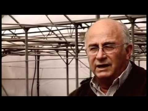 Josep Pàmies hablando claro