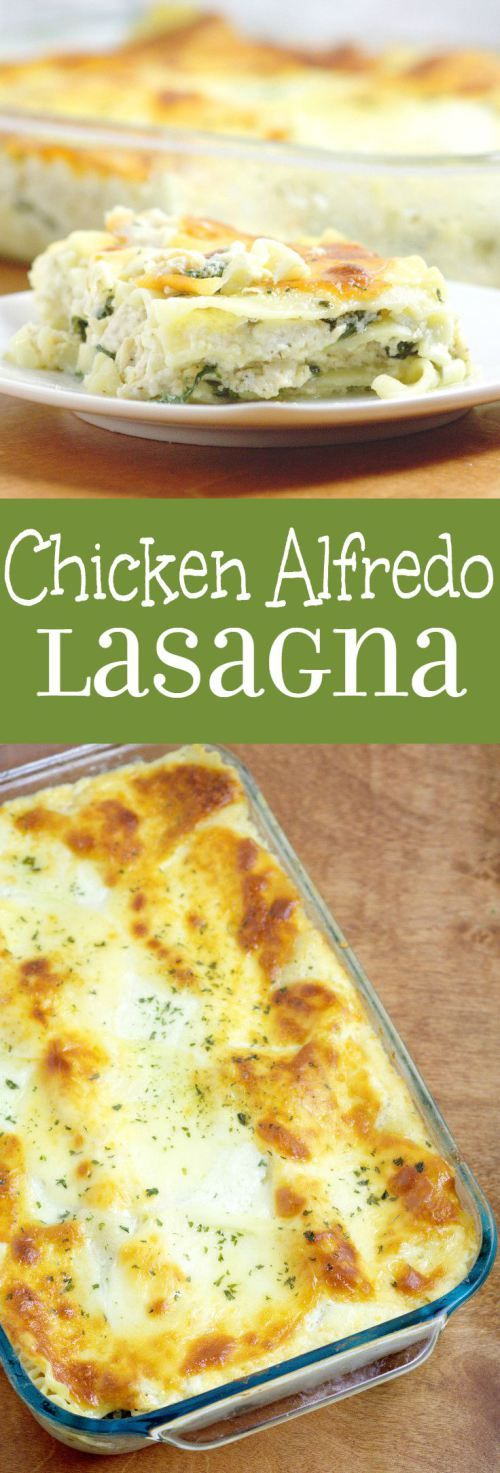 Chicken Alfredo Lasagna - Creamy homemade Alfredo sauce layered chicken, spinach, and lots of gooey cheese makes this pasta recipe a family dinner favorite. So creamy and delicious!