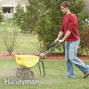 Change your lawn from scraggly to golf-course green in one season