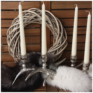 Antlers and fur