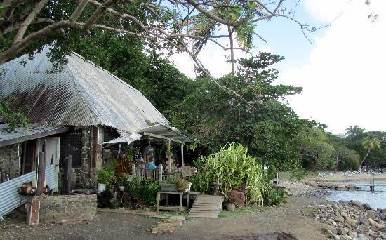 Jambe De Bois, St. Lucia (Pigeon Island)