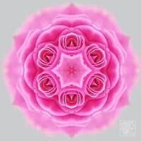 Mandala Meditation: Bringing Health, Wisdom And Harmony In Your Life