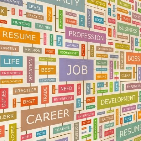 42 best Triple Play Resume Service images on Pinterest Plays - professional resume service