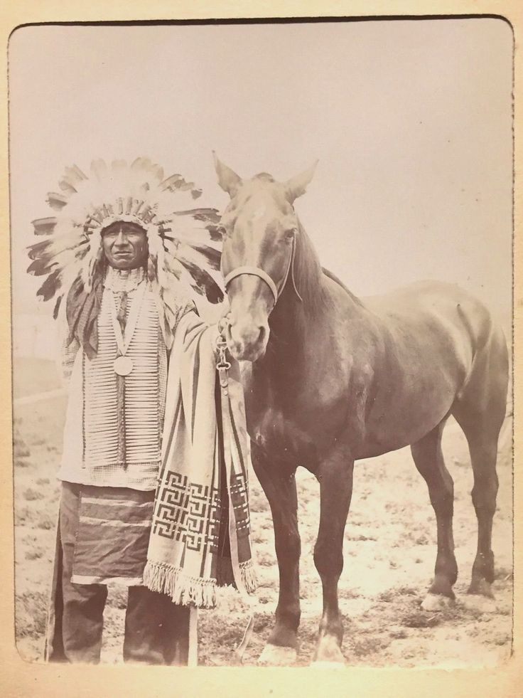 CHIEF & HORSE Original 1890s Sioux Native American