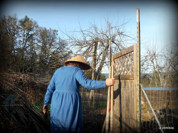 https://flic.kr/p/HeCdAV   Reconfiguring the compost area   Time to allow some fruit trees room to breathe. I've moved the compost barrel to the end of the grape arbor and relocated the chicken fence and gates. February 2016.